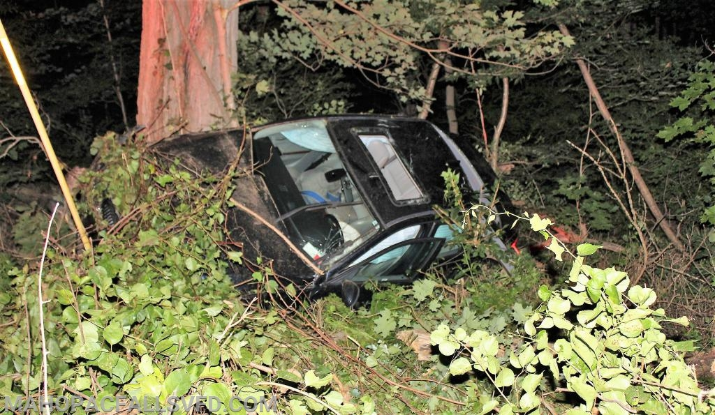 Off the road, the car came to rest against a tree