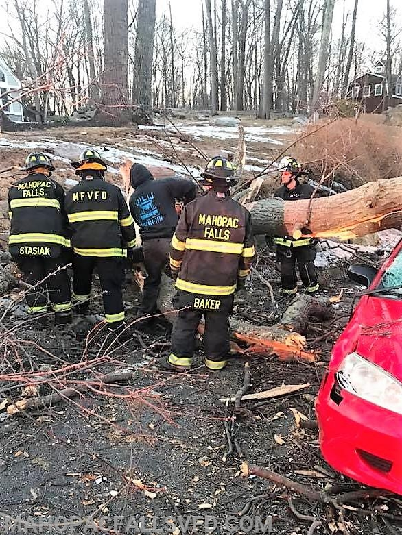 Jim McGinty III (center) shows his knowledge and expertise as he straps and winches the large tree off the car so firefighters can extricate the driver on West Lake Blvd